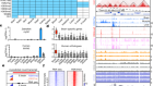 A map of cis-regulatory elements and 3D genome structures in zebrafish