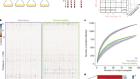 The functional proteome landscape of Escherichia coli