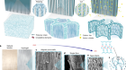 Strong tough hydrogels via the synergy of freeze-casting and salting out
