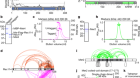 DNA-driven condensation assembles the meiotic DNA break machinery