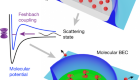 Transition from an atomic to a molecular Bose–Einstein condensate