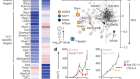 Epigenetic silencing by SETDB1 suppresses tumour intrinsic immunogenicity