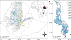 The nutritional quality of cereals varies geospatially in Ethiopia and Malawi