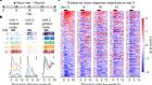 Representational drift in primary olfactory cortex