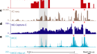 Defining genome architecture at base-pair resolution