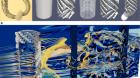Extreme flow simulations reveal skeletal adaptations of deep-sea sponges