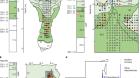 Pleistocene sediment DNA reveals hominin and faunal turnovers at Denisova Cave
