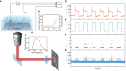 Direct imaging of single-molecule electrochemical reactions in solution