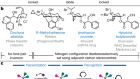 Enantioselective synthesis of ammonium cations