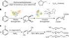 Cleaving arene rings for acyclic alkenylnitrile synthesis