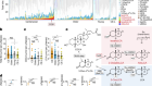 Novel bile acid biosynthetic pathways are enriched in the microbiome of centenarians