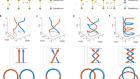 Topological complex-energy braiding of non-Hermitian bands