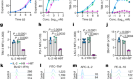 An engineered IL-2 partial agonist promotes CD8+ T cell stemness
