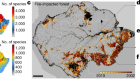 How deregulation, drought and increasing fire impact Amazonian biodiversity