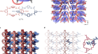 An elastic metal–organic crystal with a densely catenated backbone