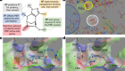 Rational design of a new antibiotic class for drug-resistant infections