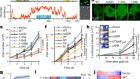 UTX condensation underlies its tumour-suppressive activity