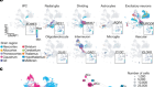 An atlas of cortical arealization identifies dynamic molecular signatures