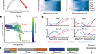 Genetic and epigenetic coordination of cortical interneuron development
