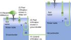 Spatiotemporal origin of soil water taken up by vegetation