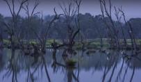 Groundbreaking Australian Murray–Darling water agreement in peril