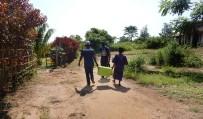 Ebola survivors still immune to virus after 40 years