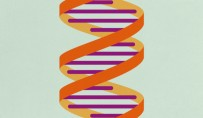 Gene-silencing technology gets first drug approval after 20-year wait