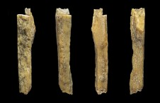 Denisovan hybrid cave yields four more hominin bones