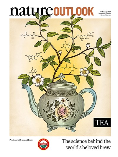 How climate change might affect tea