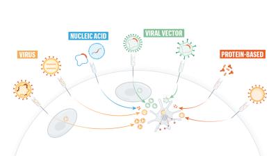complicație de la varicoseza