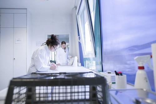 Scientists' early grant success fuels further funding