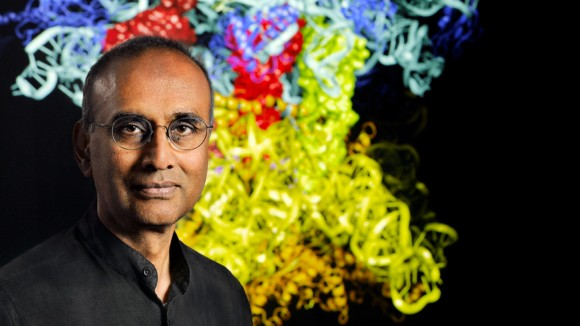 Ribosome reader to Royal Society leader: a biologist's road to the Nobel