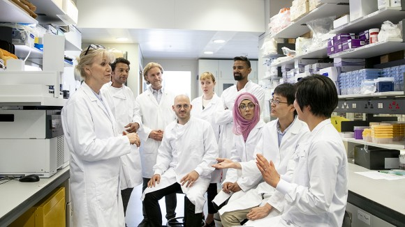 Why diversity helps to produce stronger research