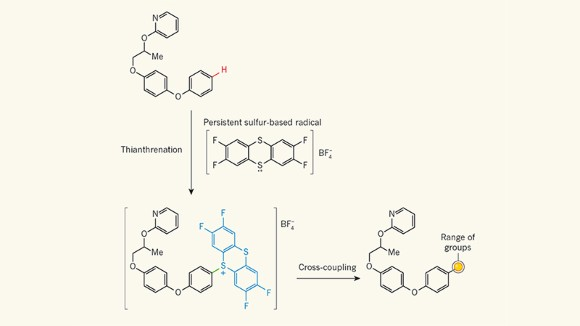 Molecular-decoration technique offers boost to medicinal chemists