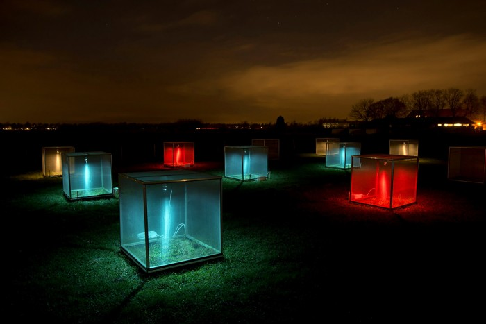 A mesocosm experiment of box lights at night
