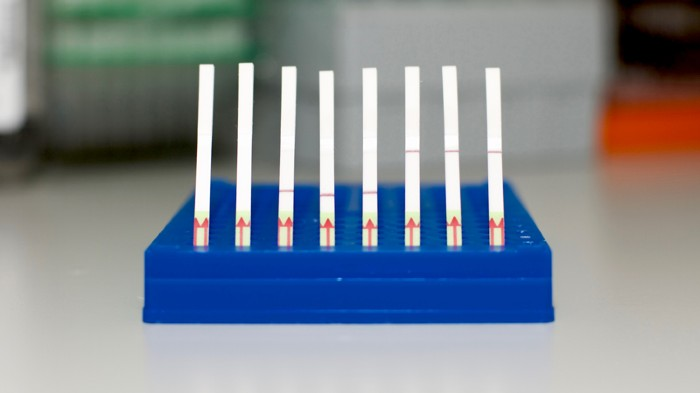 Paper test strips showing positive and negative results