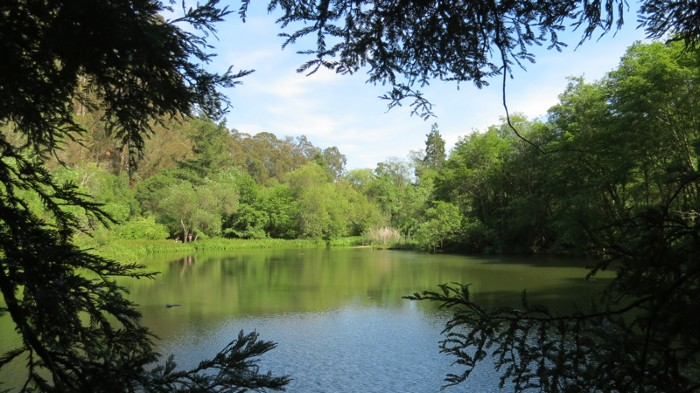 Jewel Lake, Tilden Park, East Bay Regional Park District, California