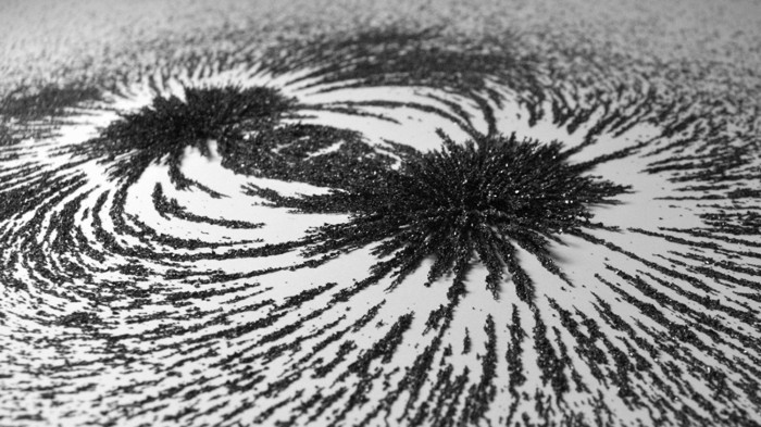 Iron filings in a magnetic field