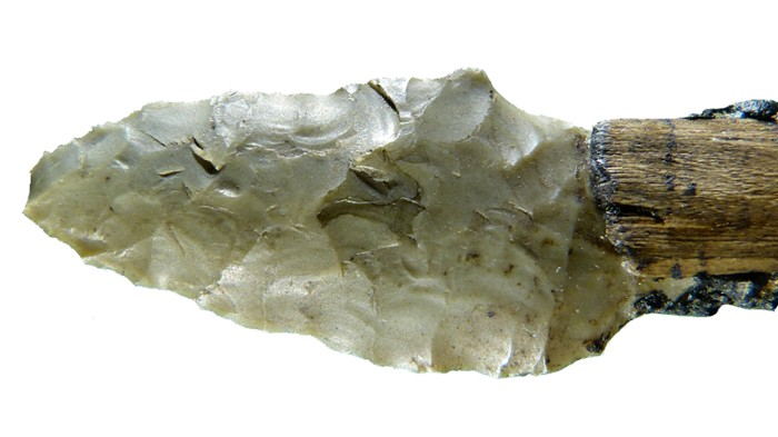 A lithic arrow head from the Iceman's toolkit