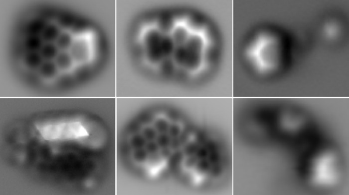 Atomic force microscopy images of molecules found in soot