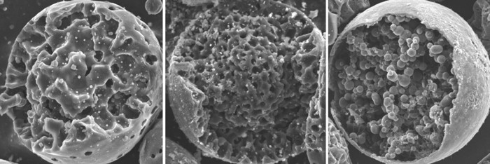 Scanning electron micrographs of mesoporous carbon microspheres