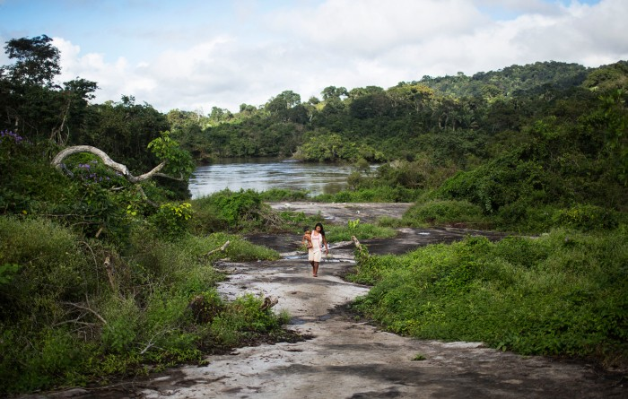 A woman walks through the Amazon forest