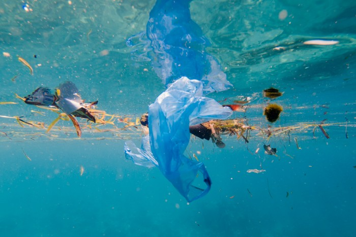 Plastic bags and debris floating in clear blue water