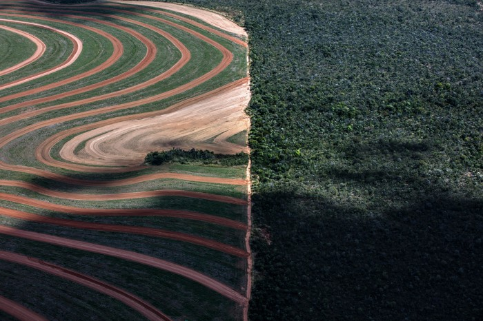 Soy fields border untouched Cerrado forest in the Matopiba region of Brazil