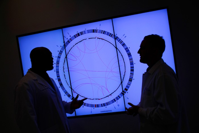Oncologists silhouetted against a cancer genome display