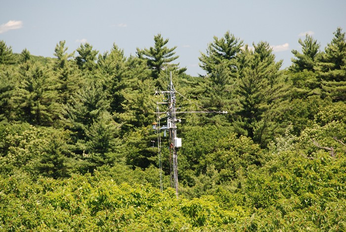 The Environmental Measurements Tower in Harvard Forest