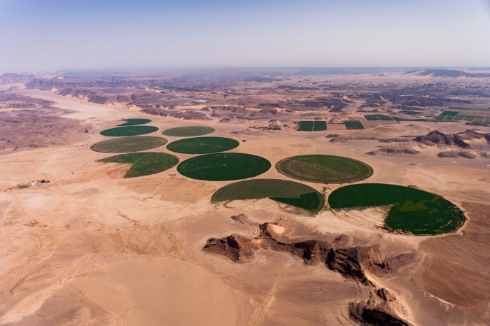 Carousel irrigation system creates circular crop fields in the Wadi Rum desert in Jordan
