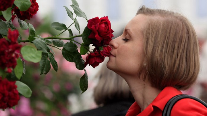 A woman smells a flower in the rose garden at the annual Chelsea flower show in London.
