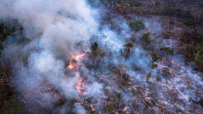 Amazon forest area is burnt in rural Novo Progresso.