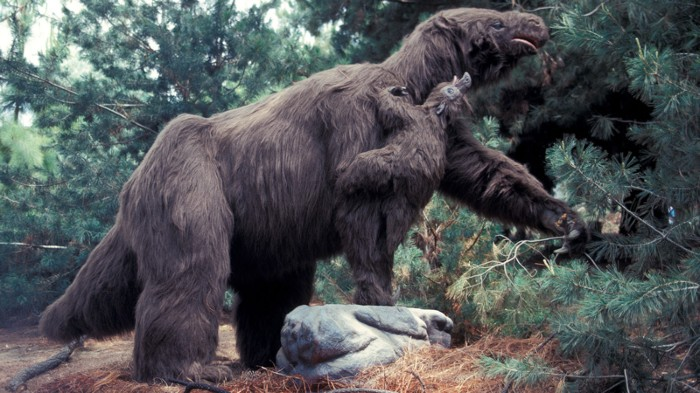 Artist impression of giant sloth.